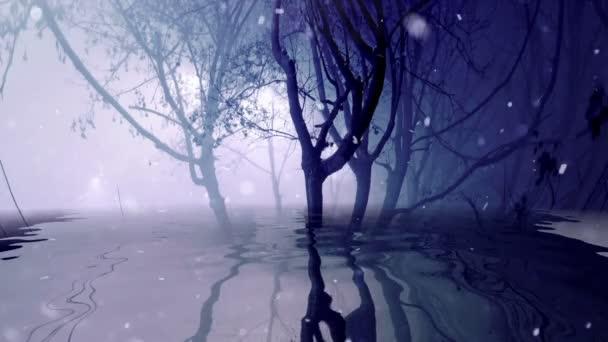 Sníh v mlhavých stromech odrážejících se ve vodě