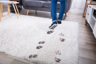Low Section View Of A Person Walking With Muddy Footprint On Carpet At Home