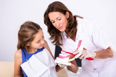Girl Looking At Female Dentist Cleaning Teeth Model With Toothbrush
