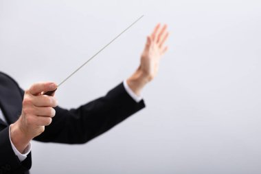 Close-up Of A Music Conductor Hands Holding Baton Against Gray Background