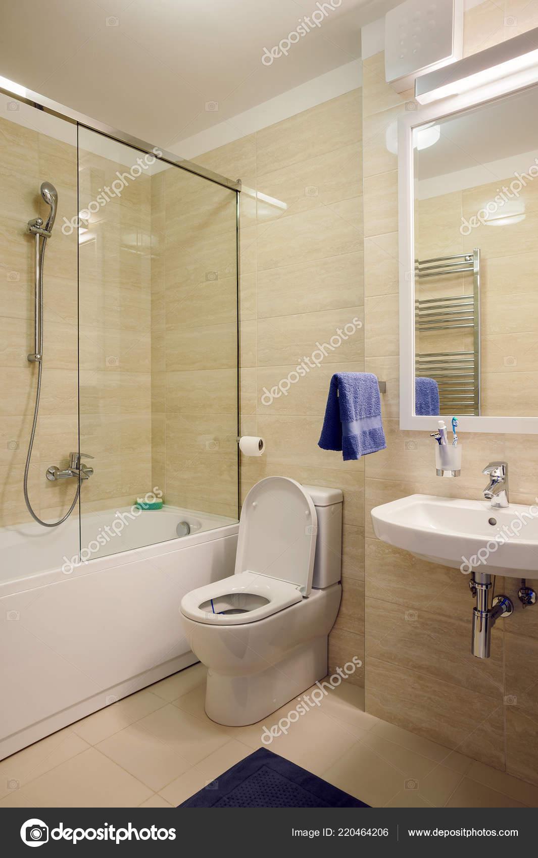 Interior Apartamento Pequeño Moderno Cuarto Baño Detalles Estilo ...