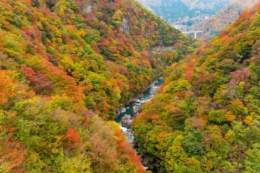 Autumn landscape in Kinugawa, Japan