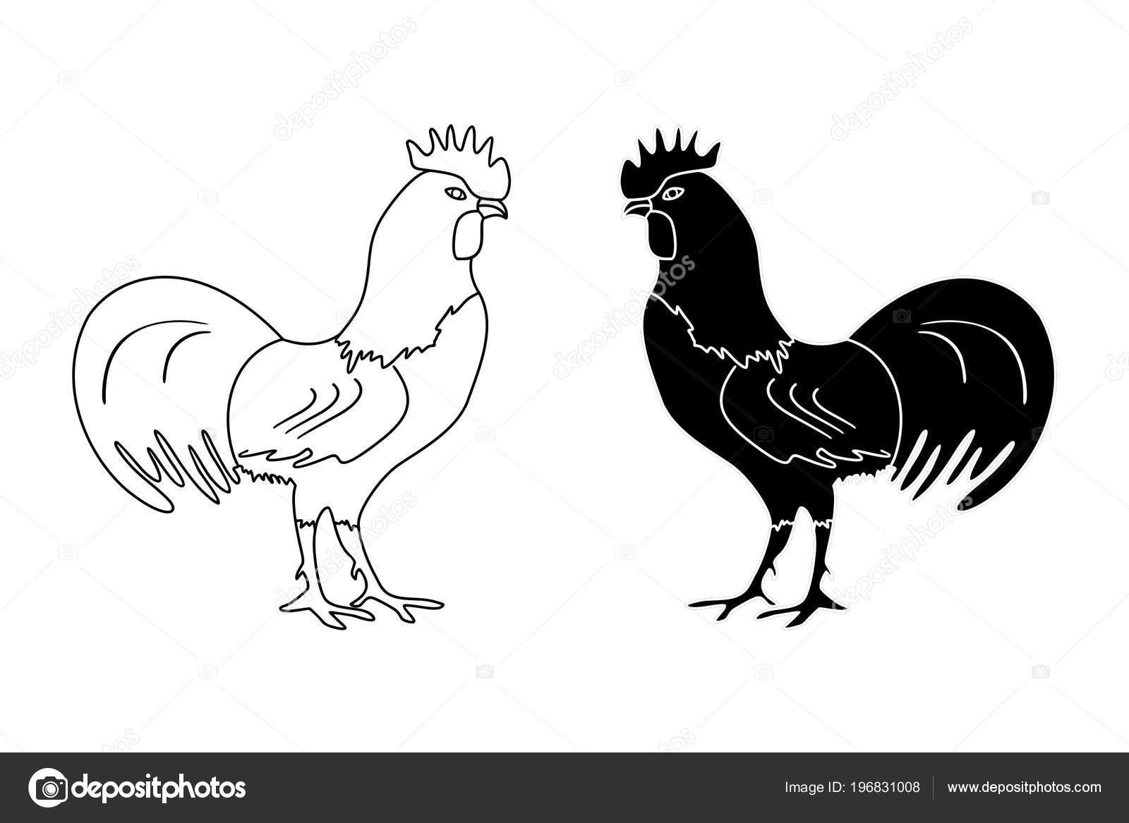 0ab5e65d63d19 Contorno Blanco Negro Dibujo Gallo Sobre Fondo Blanco Ilustración Vectorial  — Archivo Imágenes Vectoriales