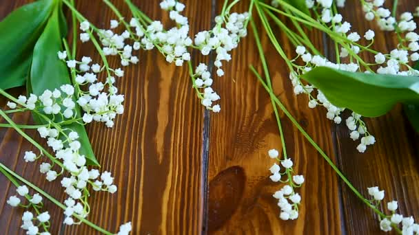 Beautiful spring flowers lily of the valley