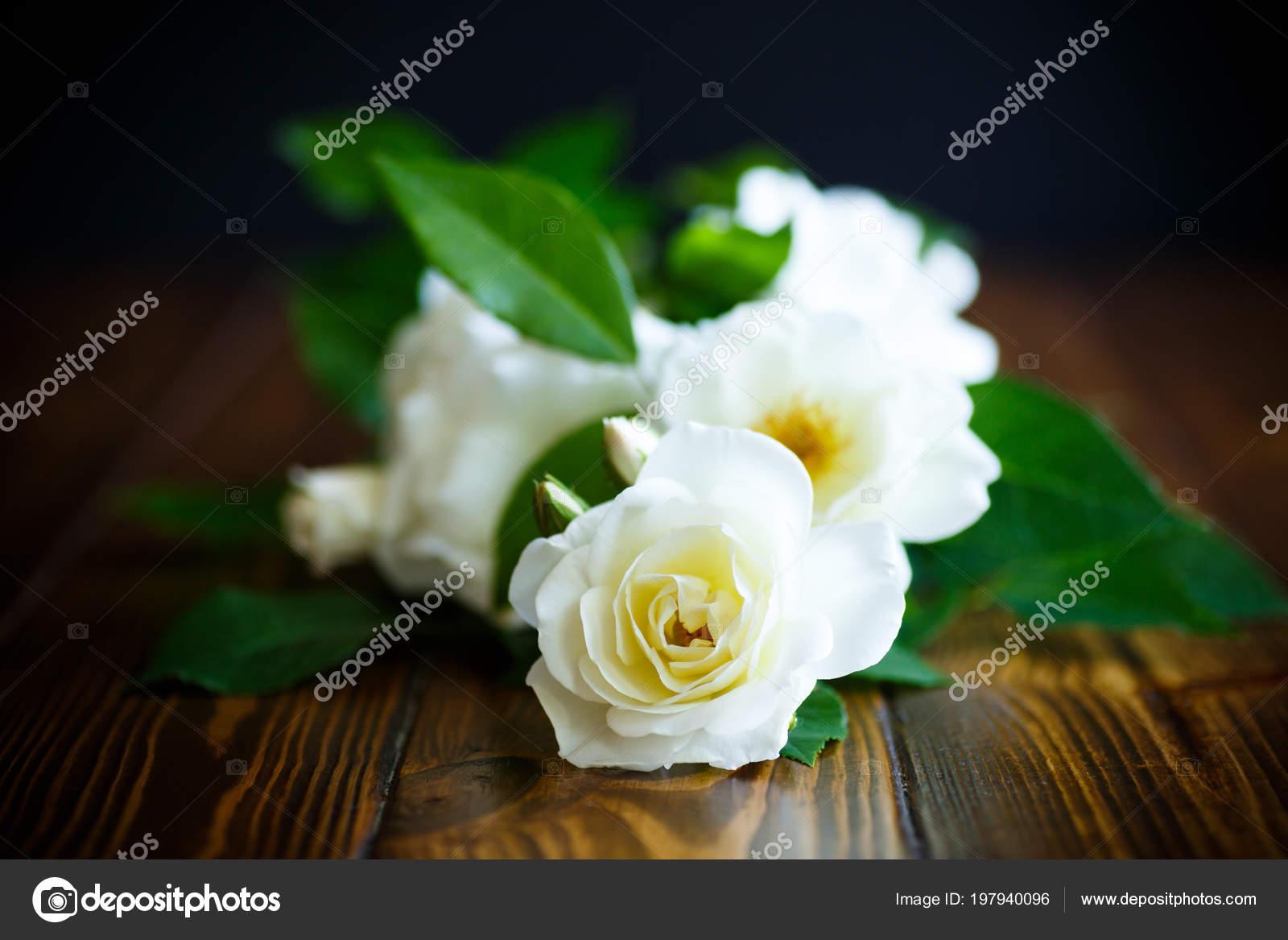 Hermosas Rosas Flores Blancas Sobre Una Mesa Madera Fotos De Stock