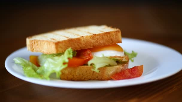 fresh sandwich with lettuce leaves and fried egg with hot toasts