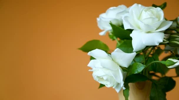 kytice krásných bílých růží na oranžovém