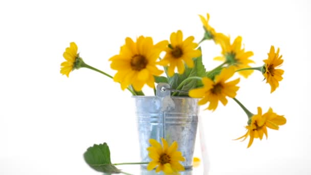 bouquet of beautiful blooming yellow daisies isolated on white