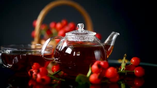 horký čaj z léčivých plodů červeného zralého rosehipa