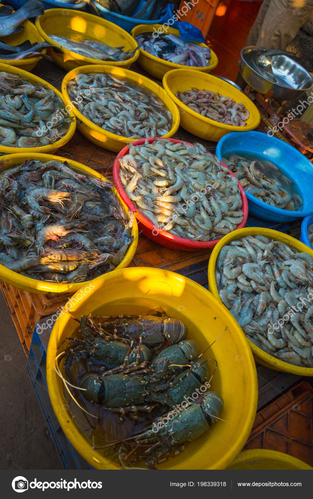 Sale Seafood Markets Different Cities Goa Other States India — Stock