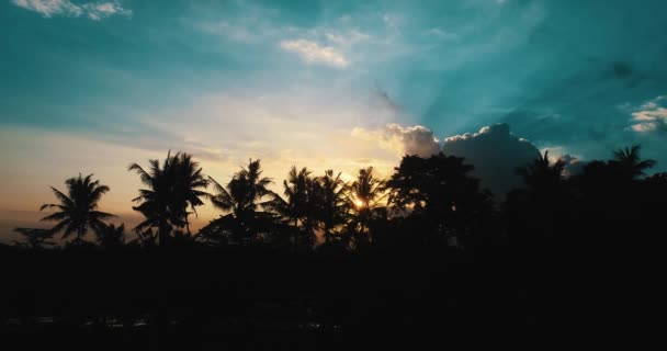 Aerial view of amazing cloudy sunset with with silhouettes of palm trees / Aerial drone view of amazing cloudy sunset with with silhouettes of tropical palm trees in Bali, Indonesia