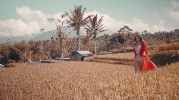Krásná žena v rýžových polích / krásná mladá žena v červené transparentní šaty pěšky podél pole rýže - video v pomalém pohybu