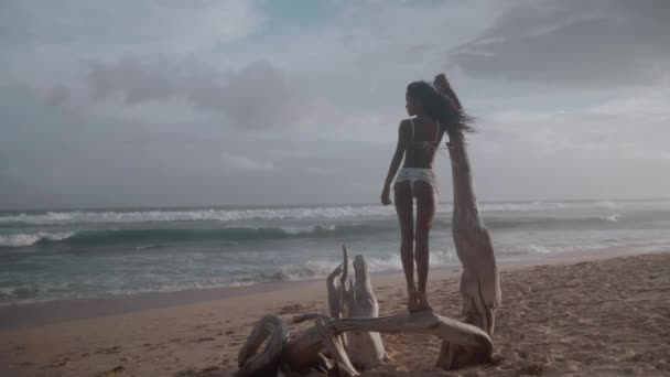 Beautiful happy girl standing on fallen tree at the sandy beach during amazing sunset - video in slow motion