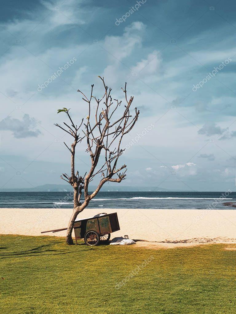 Wheelbarrow on the sandy beach near the tree over blue sea and summer sky background