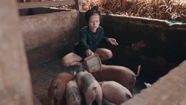 Szép divat lány etetés malac és a kis piszkos sertéstelep pózol. Az elegáns csípő női portré