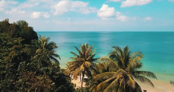 Fly over tropical trees and beautiful lagoon sea water during summer day. Summer and travel vacation concept