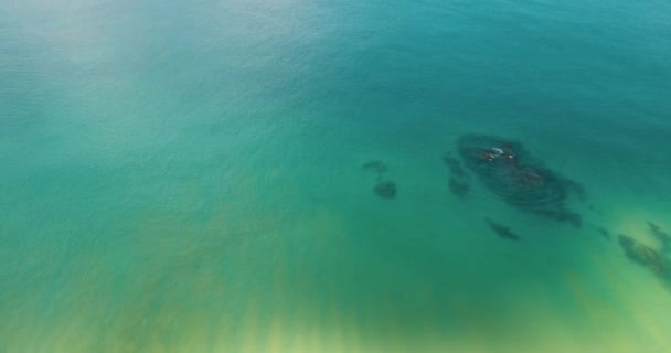 Aerial drone top view of transparent shallow water of sea ocean surface