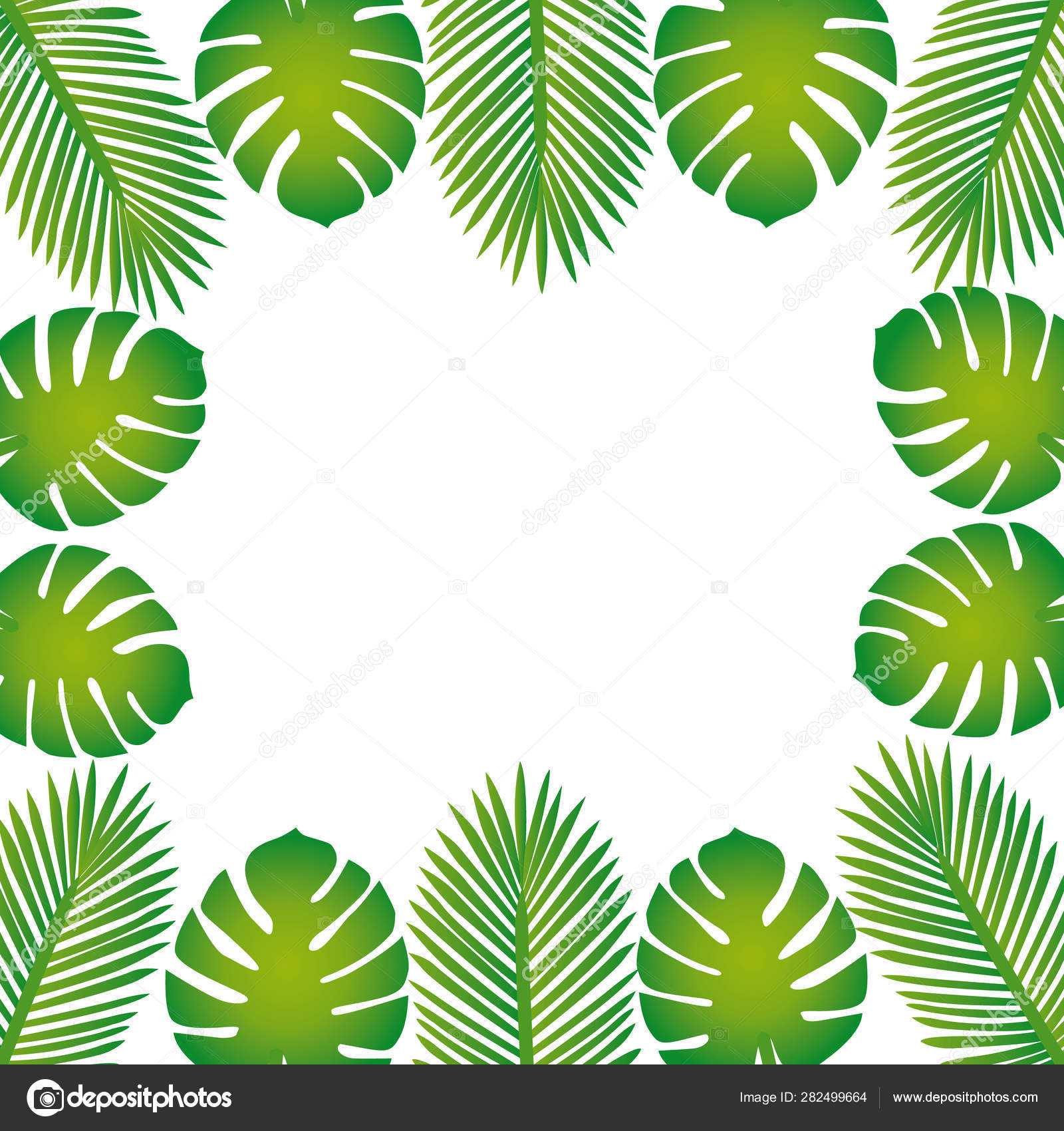 Trendy Summer Tropical Leaves Border Vector Design Stock Vector C Albachiaraa 282499664 Tropical leaf palm print, showing various tropical plants together in one poster. trendy summer tropical leaves border vector design stock vector c albachiaraa 282499664