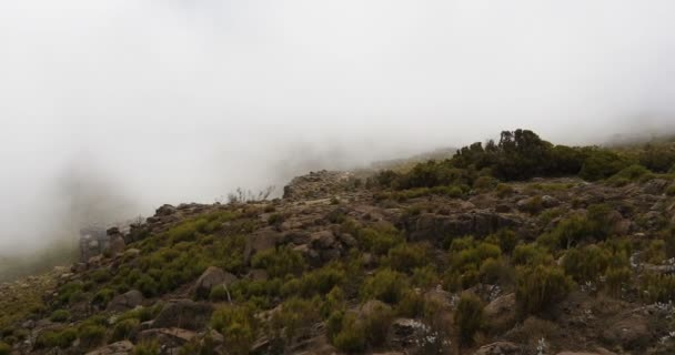 landscape of Bale Mountain with mist and clouds