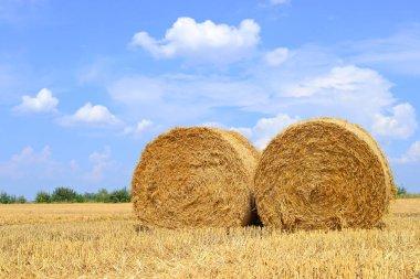 Harvesting of straw in the rural landscape