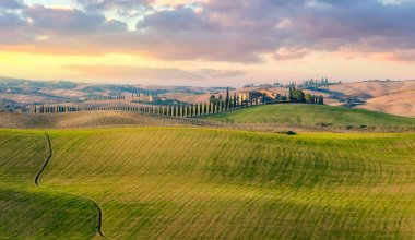 Majestic Panoramic view of typical Tuscany countryside nature landscape. Beautiful hills at the sunrise time, cypresses, fields and rural road. Italy, Europe stock vector