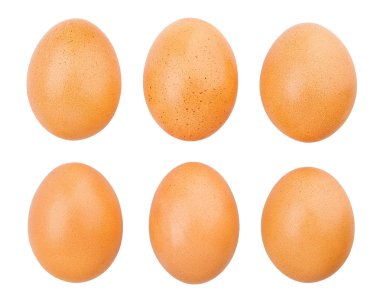 eggs isolated on white close up shot