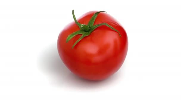 Rajčata izolované na bílém pozadí