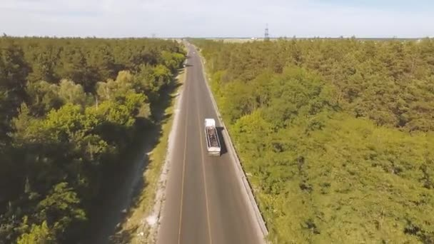 Aerial view of Freight truck transporting cargo over highway