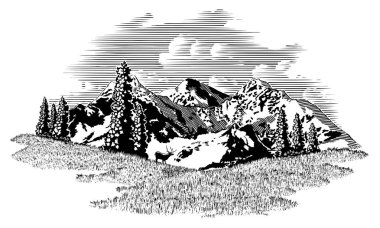 Woodcut illustration mountain scene with an elk in the background.