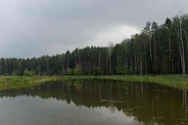 The Meshchersky pond in Park of Moscow
