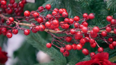 Decorative branch with red berries.