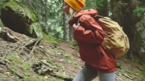 Karcsú lány megy az ösvényen az első, a tűlevelű erdő. Turizmus Caucasus tartalékba. Felveszi a kapcsolatot a kamera