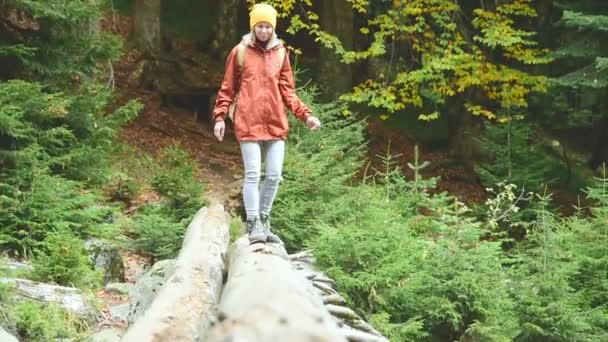 Slender girl walking along a log through a mountain river in the forest. Tourism in the Caucasus Reserve. Goes towards the camera