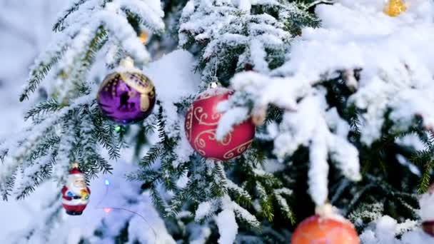 Close-up of a Christmas toy on a snow-covered lively tree in the winter forest on the background of lights