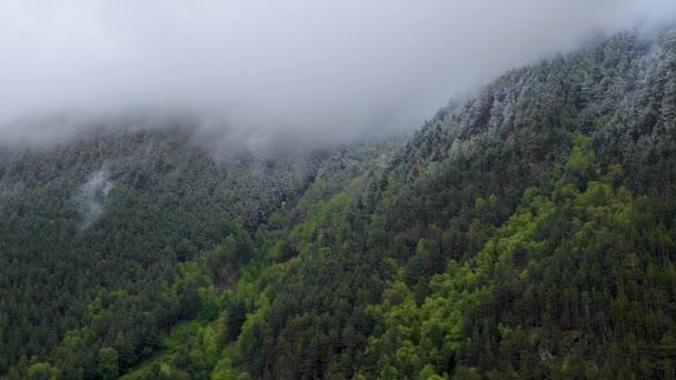 Taillaps meredek hegyi lejtők borított örökzöld erdő és porított hó, amelyen alacsony felhők áramlanak. 4K felhő mozgás a hegyekben