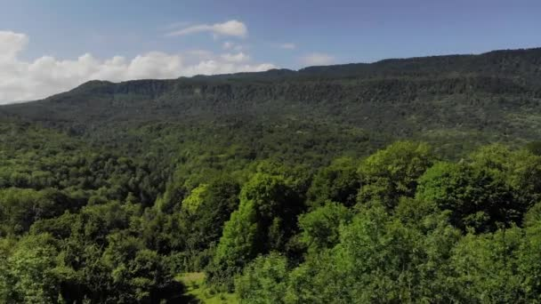 Aerial view of flight over valley and hills covered with deciduous forest in summer sunny day