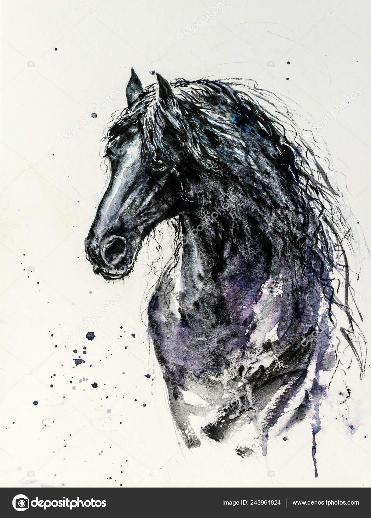 Decorative Portrait Beautiful Friesian Horse Long Mane Black Color White Stock Photo C Deepgreen 243961824