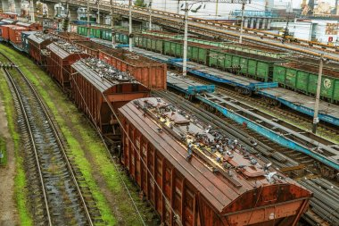 Odessa, Ukraine - October 12, 2016: A freight train on the branch station. Rail transportation. Freight. Railway silos with grain and corn. A flock of hungry pigeons in the silo with grain cover