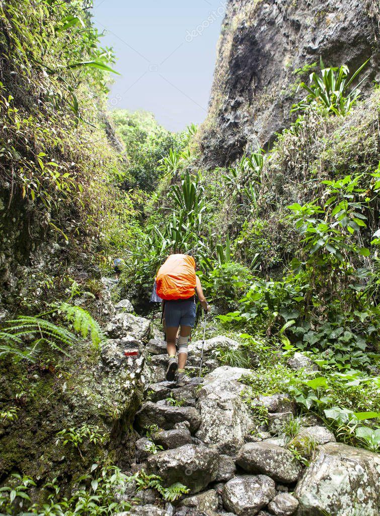 difficult trek in tropical island