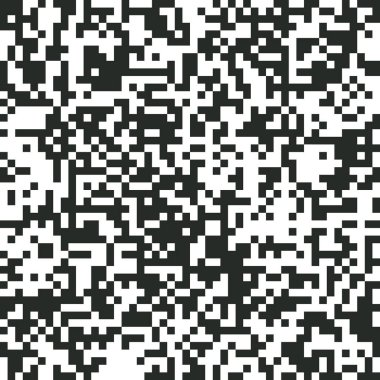 QR Code Digital Abstract Black and White Pixel Noise Background