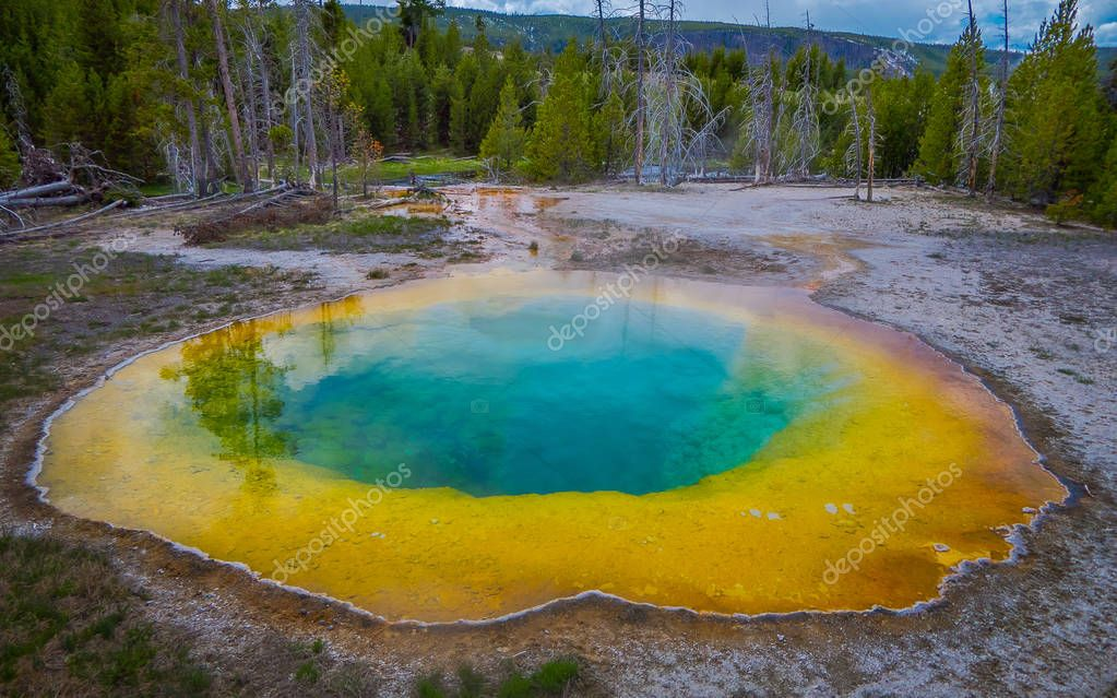 Colorful grand Prismatic Pool, blue and yellow at Yellowstone National Park in a gorgeous sunny day