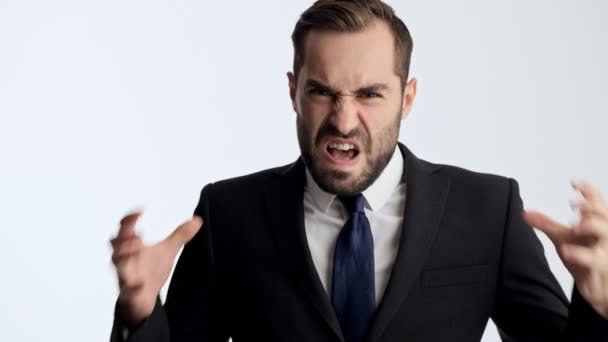 Close up view of aggressive young businessman in black suit and blue tie screaming and gesturing with hands while looking at the camera over gray background isolated