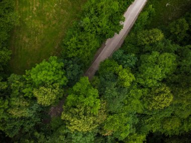 Top down view on countryside road in forest,aerial drone.