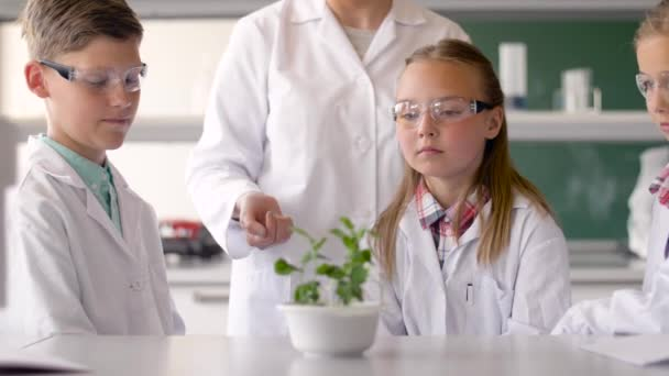 Schüler und Lehrer mit Anlage im Biologie-Unterricht — Stockvideo ...