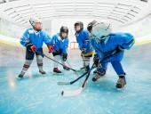 Fotografie Portrét šťastný chlapců a děvčat, lední hokej, cvičení s holemi na kluzišti