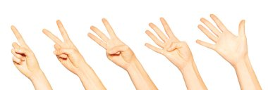 Female hands with one, two, three, four and five fingers isolated on white background stock vector