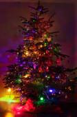 Osvětlený vánoční stromek v různých barevných světlech v noci