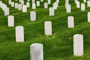 White tomb stones on green grass of the cemetery burial ground