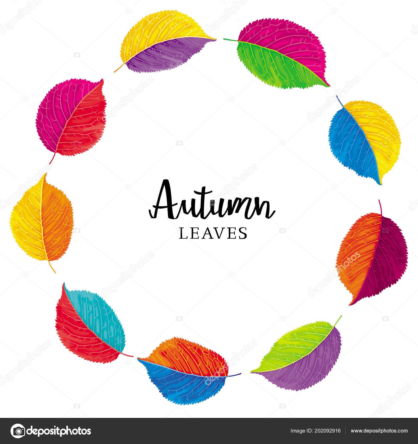 Bunte Herbstblätter Vektor Kranz Vorlage Für Sommer Und Herbst