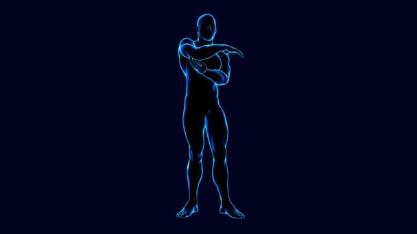 3d animated male body anatomy rotating on black background
